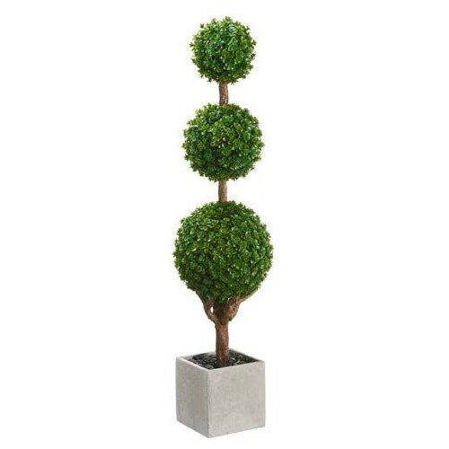 Baby's Tear Triple Ball Square Topiary in Pot