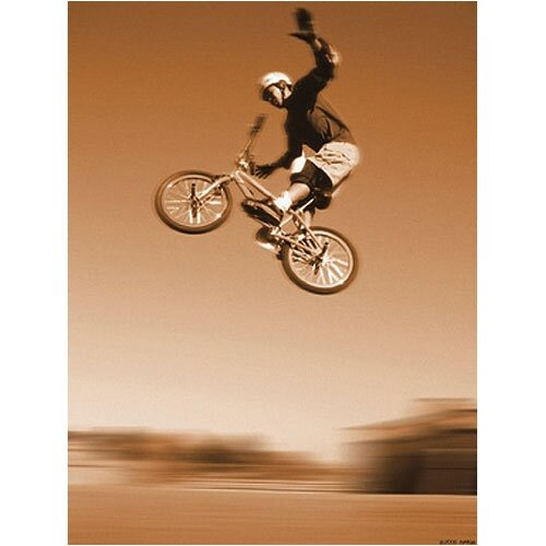 Take A Flying Leap Canvas Art