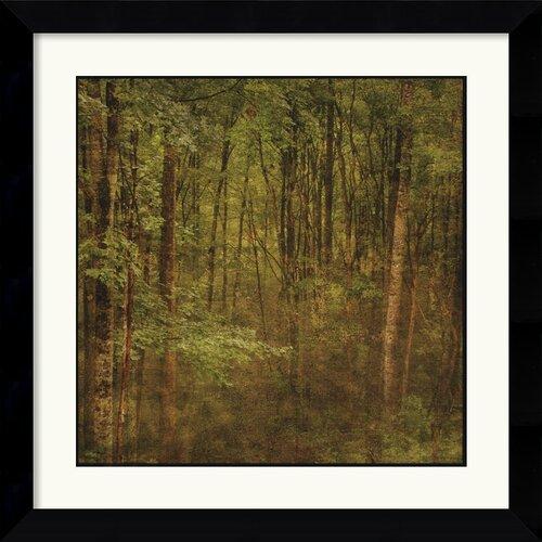 Amanti Art 'Fog in Mountain Trees' by John W. Golden Framed Painting Print