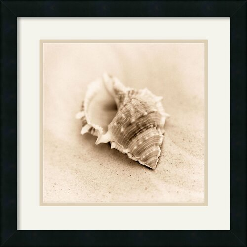 Amanti Art 'Il Oceano No. 3' by Alan Blaustein Framed Photographic Print