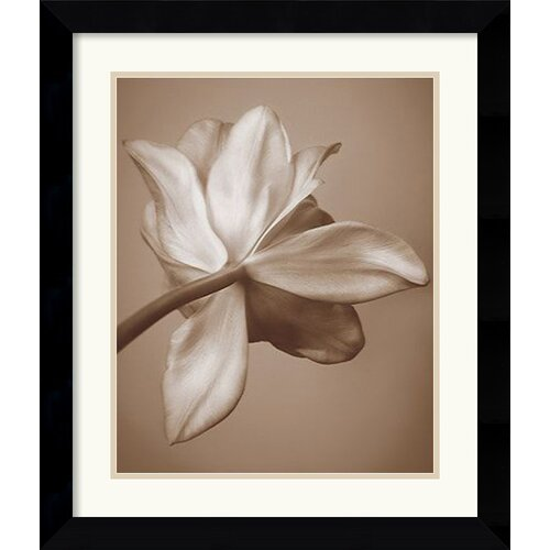 'Moonlight Tulip' by Rebecca Swanson Framed Photographic Print
