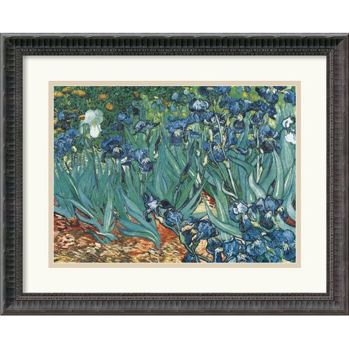 Amanti Art 'Les Irises (Irises)' by Vincent Van Gogh Framed Painting Print