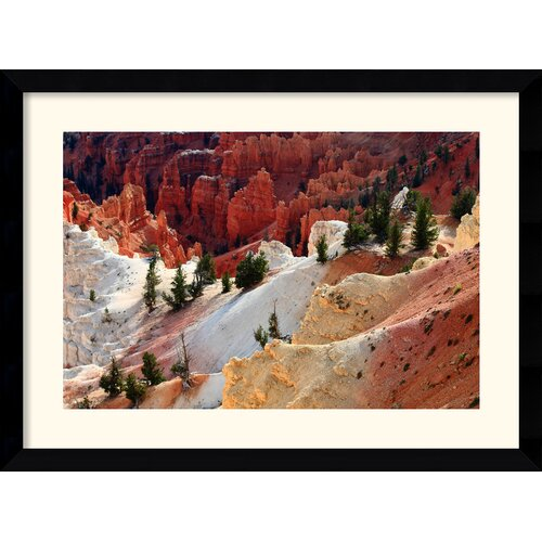 Amanti Art 'Cedar Breaks National Monument' by Andy Magee Framed Photographic Print