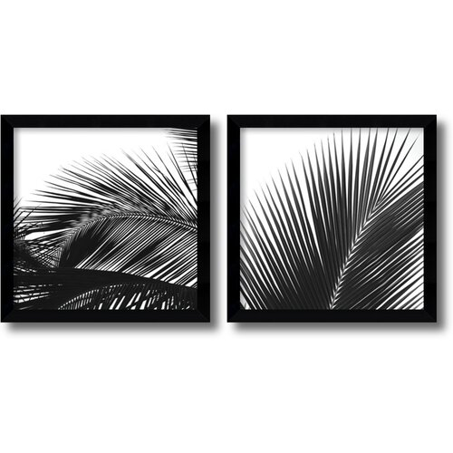 'Palm Details' by Jamie Kingham 2 Piece Framed Photographic Print Set