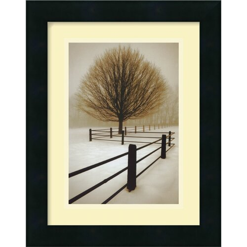 Amanti Art 'Solitude' by David Lorenz Winston Framed Photographic Print