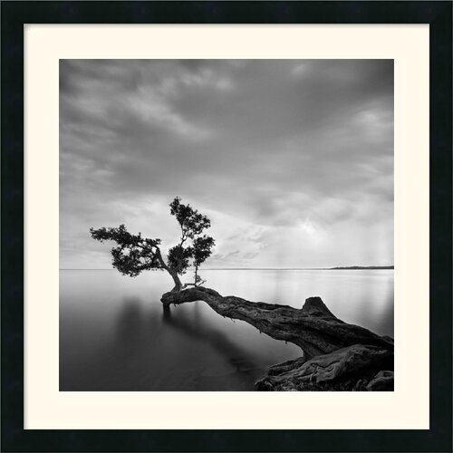'Water Tree' by Moises Levy Framed Photographic Print