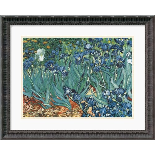 Amanti Art 'Les Irises' by Vincent Van Gogh Framed Painting Print