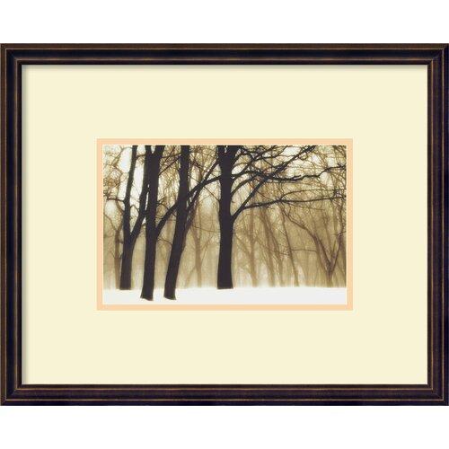 Amanti Art 'Past Dreams' by David Lorenz Winston Framed Photographic Print