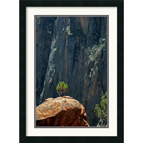 'Black Canyon Pinon' by Andy Magee Framed Photographic Print