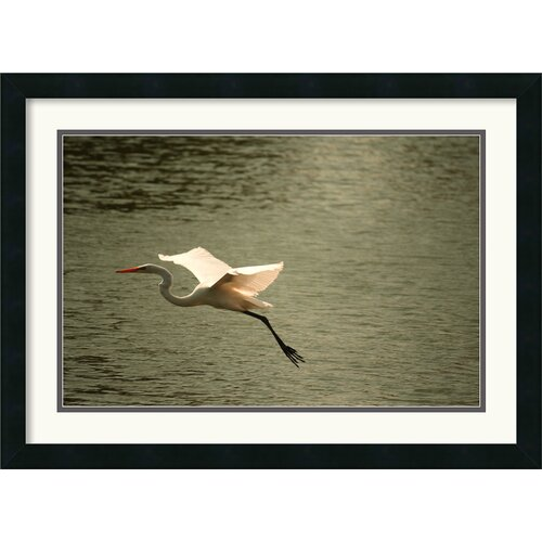 'Crane' by Andy Magee Framed Photographic Print