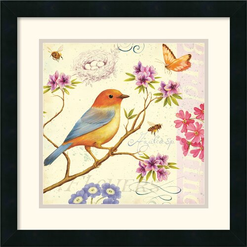 Amanti Art 'Birds and Bees II' by Daphne Brissonnet Framed Graphic Art