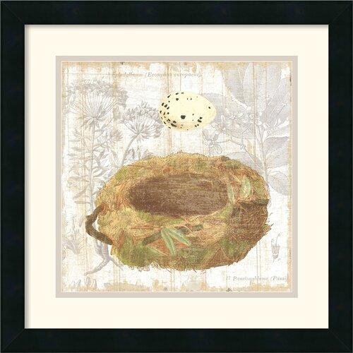 Amanti Art 'Botanical Nest I' by MHershey Framed Painting Print