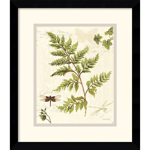 'Ivies and Ferns I' by Lisa Audit Framed Graphic Art