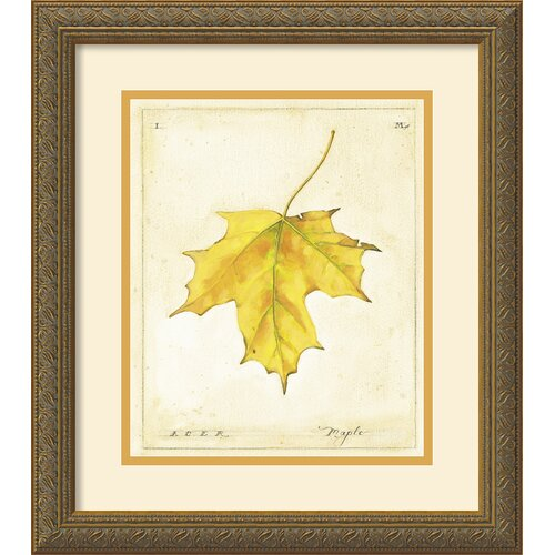 'Maple Leaf' by Meg Page Framed Graphic Art
