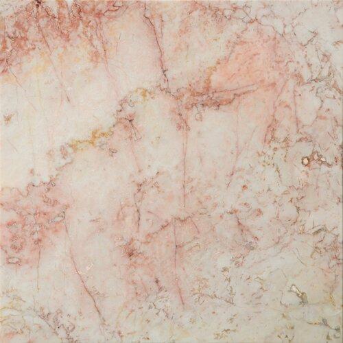 """Emser Tile Natural Stone 12"""" x 12"""" Marble Tile in Coral Notte Rose"""