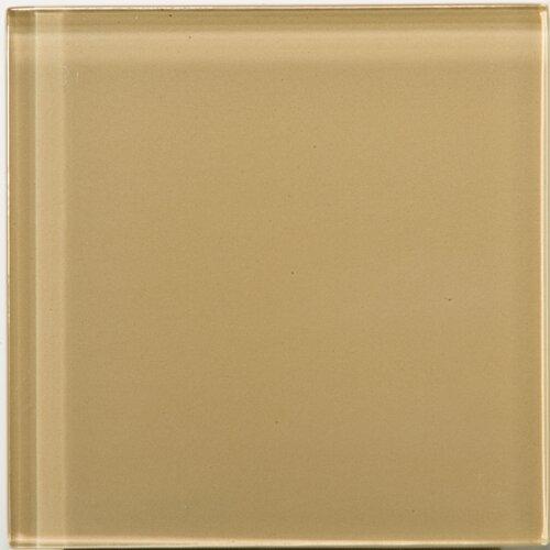 """Emser Tile Lucente 4"""" x 4"""" Glossy Field Tile in Honey"""
