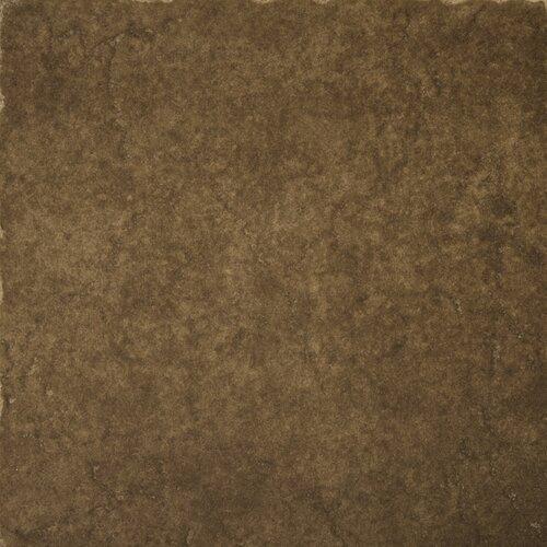 """Emser Tile Genoa 16"""" x 16"""" Glazed Porcelain Floor Tile in Pinelli"""