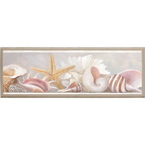 Illumalite Designs Starfish and Shells Framed Graphic Art