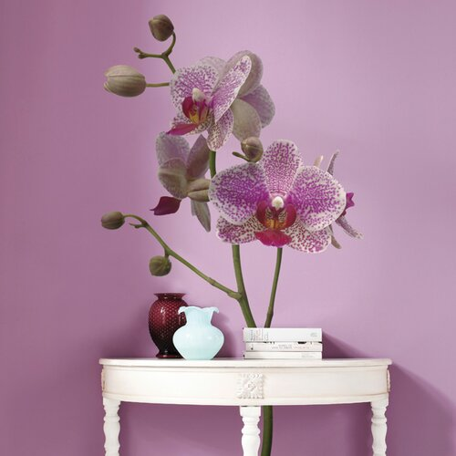 Komar Freestyle Orchids Wall Decal