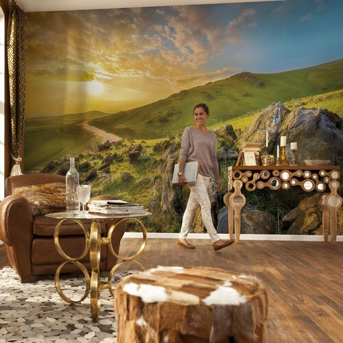 Komar mountain morning wall mural wayfair for Brewster wall mural