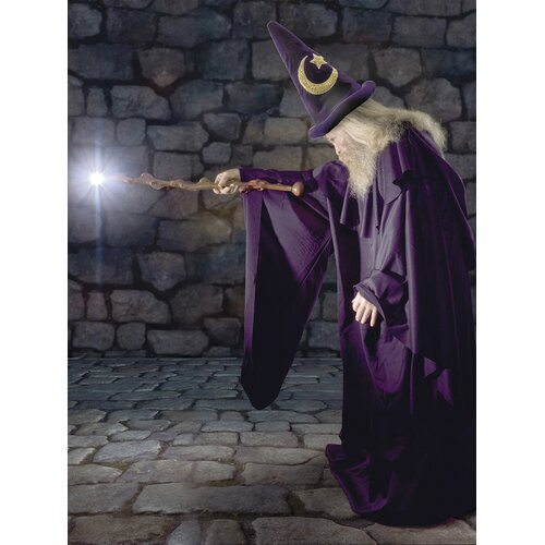 Brewster Home Fashions Ultimate The Wizard Wall Mural