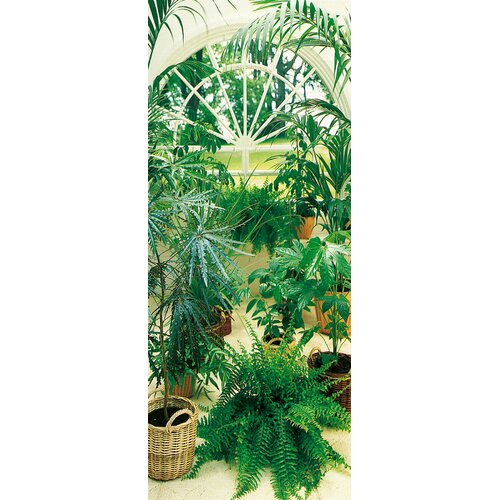 Brewster Home Fashions Ideal Decor La Serre Wall Mural