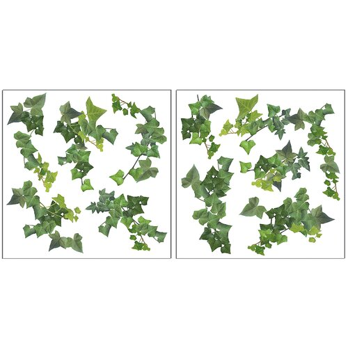 Home Décor Ivy Wall Decal