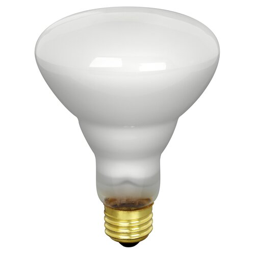 FeitElectric 65W 120-Volt Incandescent Light Bulb (Pack of 2)