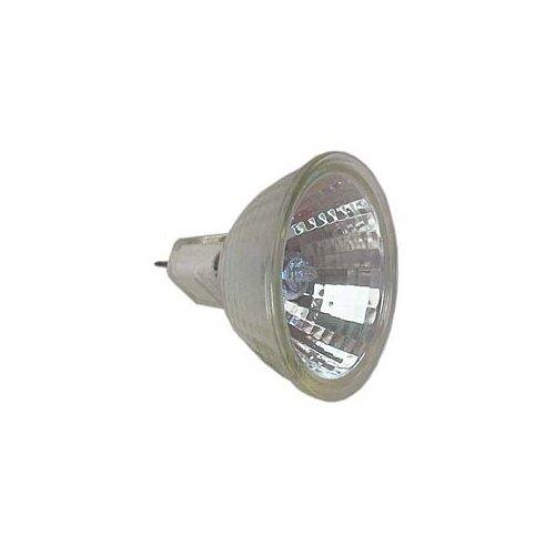 12-Volt Halogen Light Bulb