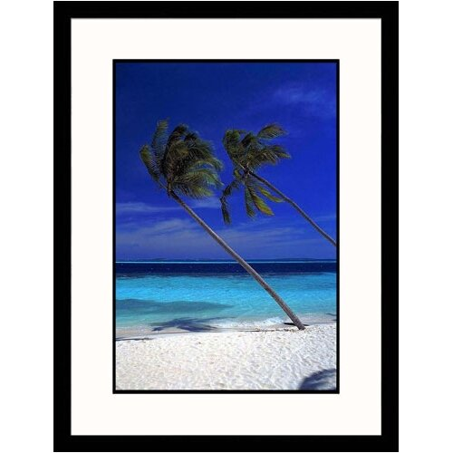 Seascapes 'Tropical Palm Trees' by Frank Chmura Framed Photographic Print