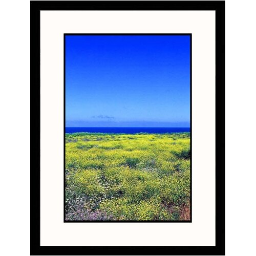Great American Picture Seascapes 'Field of Yellow Flowers' by Mark Segal Framed Photographic Print