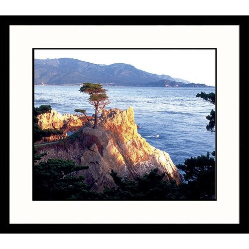 Great American Picture Seascapes Lone Cypress Framed Photographic Print