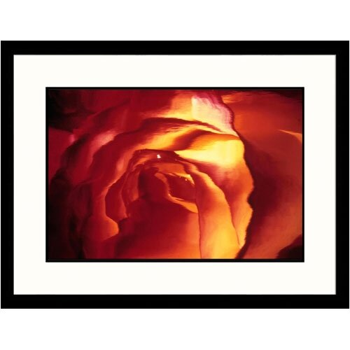 Great American Picture Florals Center of Rose Framed Photographic Print