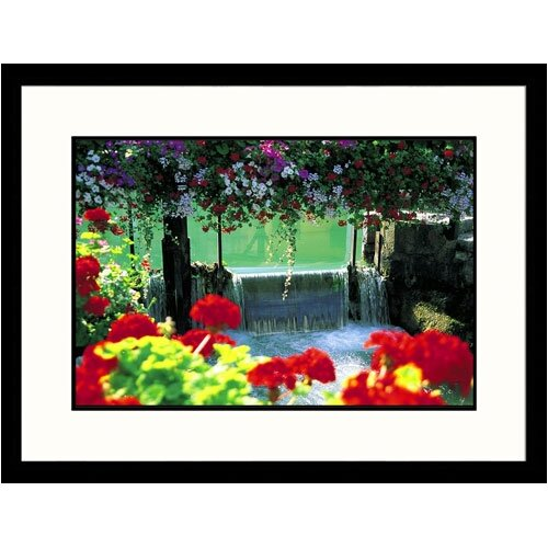 Great American Picture Florals Flowers and Dam Framed Photographic Print