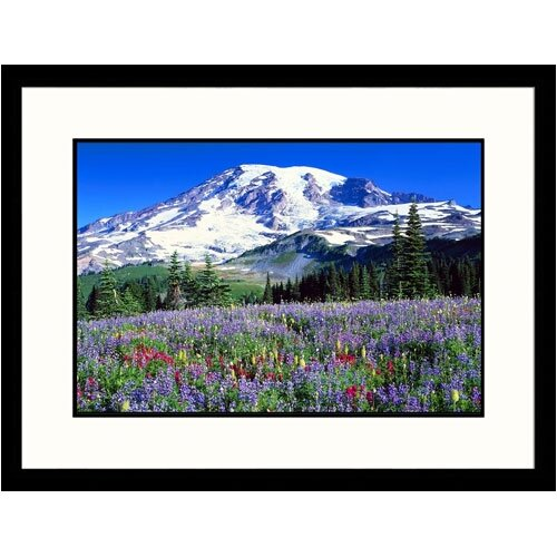 Great American Picture Florals Wildflowers at Mt Rainier Framed Photographic Print