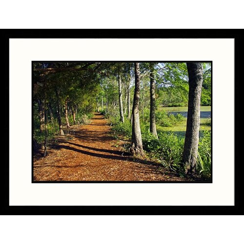 Great American Picture Landscapes 'Audubon Swamp Garden, Magnolia Plantation' by Pat Canova Framed Photographic Print
