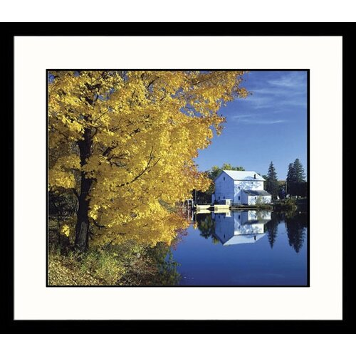 Landscapes 'Golden Male' by Ken Dequaine Framed Photographic Print