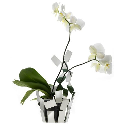 """Alessi """"Stanza Scirocco"""" Vase Cover"""