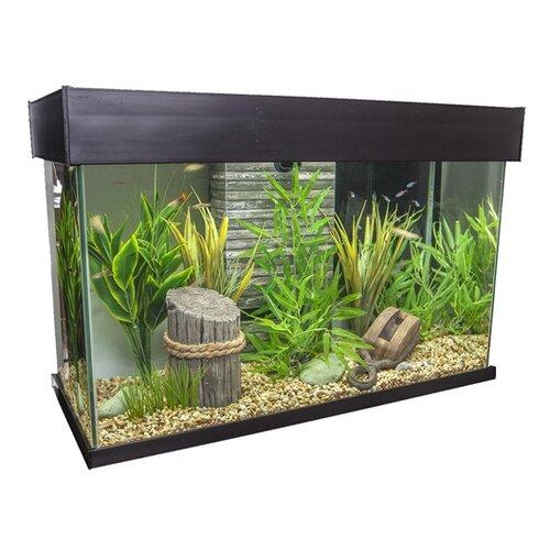 Fluval 25 gallon accent aquarium wayfair Decoration aquarium 60 litres