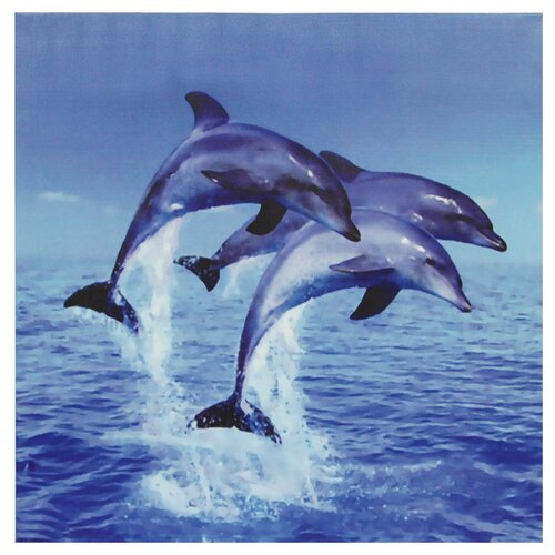 Three Rising Dolphins Photographic Print on Canvas