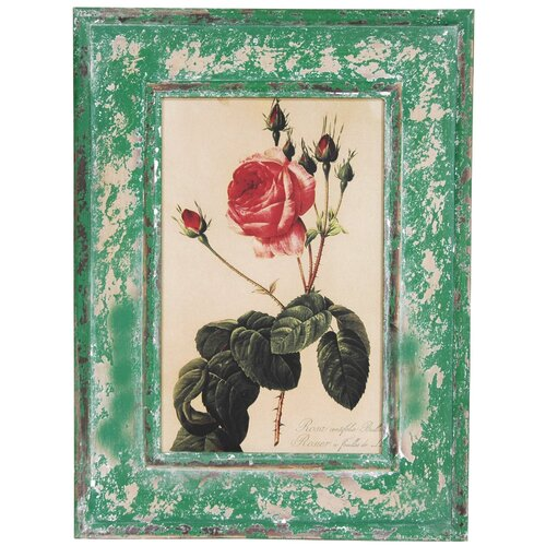 Oriental Furniture Rustic Rose Framed Graphic Art