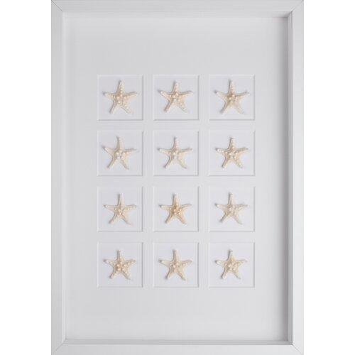 Starfish Graphic Art Shadow Box