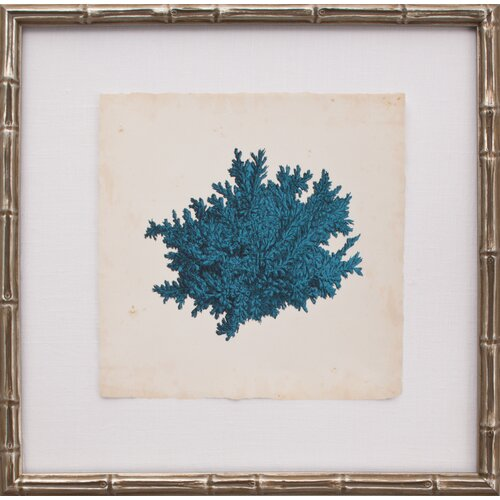 Mini Turquoise Coral II Framed Graphic Art