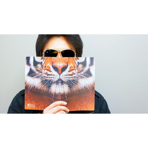 Molla Space, Inc. Tiger Sniffing Notebook
