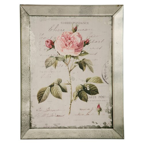 English Rose Framed Graphic Art