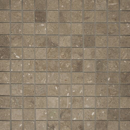 "Epoch Architectural Surfaces 1"" x 1"" Tumbled Limestone Mosaic in Seagrass"