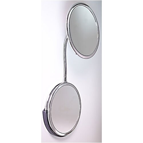 Goose Neck Vanity and Wall Mirror
