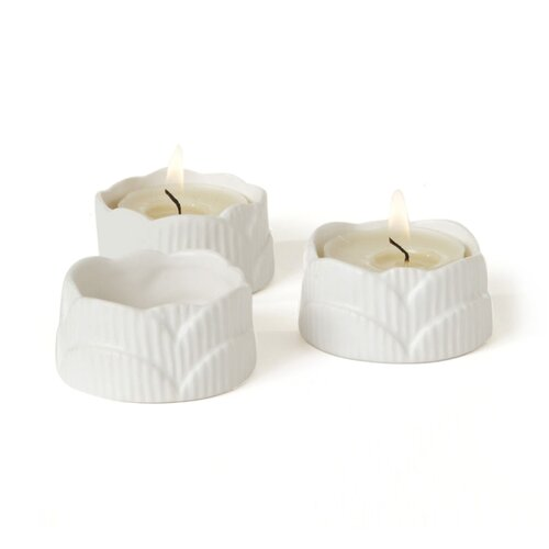 DwellStudio Scallop Tea Lights (Set of 3)