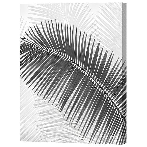 Menaul Fine Art Palm Frond Limited Edition by Scott J. Menaul Framed Graphic Art