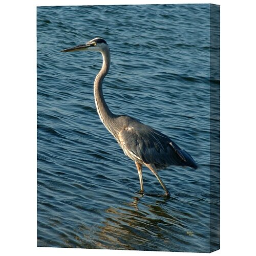 Heron Limited Edition by Scott J. Menaul Framed Photographic Print